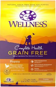 Product photo: Wellness Complete Health Natural Grain Free Dry Dog Food. Click to check price.