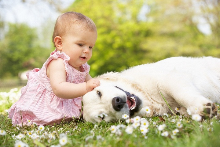 9 things let your baby play with puppy safely