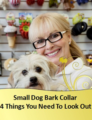 best-bark-collar-for-small-dog