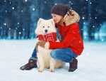 keep your pet warm in winter