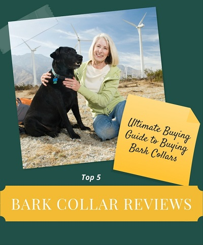 best-bark-collar