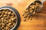Natural Balance Dry Dog Food Potato Duck