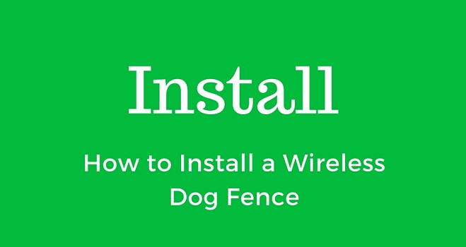 how-to-install-a-wireless-dog-fence
