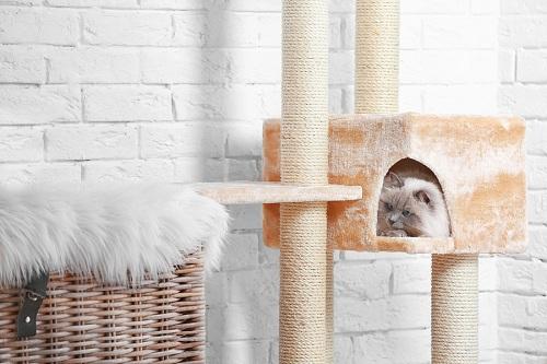 Modern-Cat-Tree