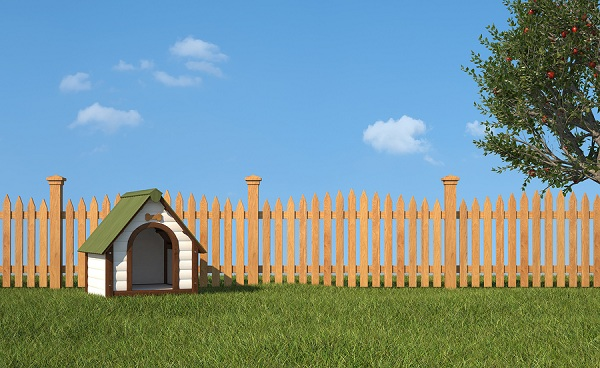 6 Easy Steps To Build Your Own Dog House