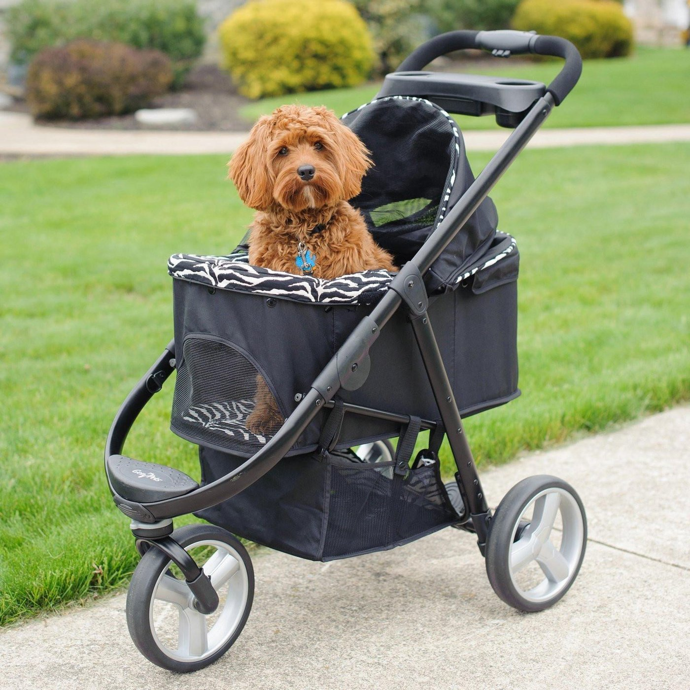 Best Dog Stroller For Your Beloved Pet Your Pet Land