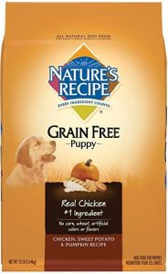 Product photo: Nature's Recipe Grain-Free Dry Dog Food. Click to check price.