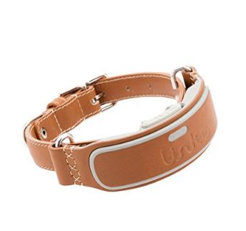 Link AKC Smart GPS Dog Collar