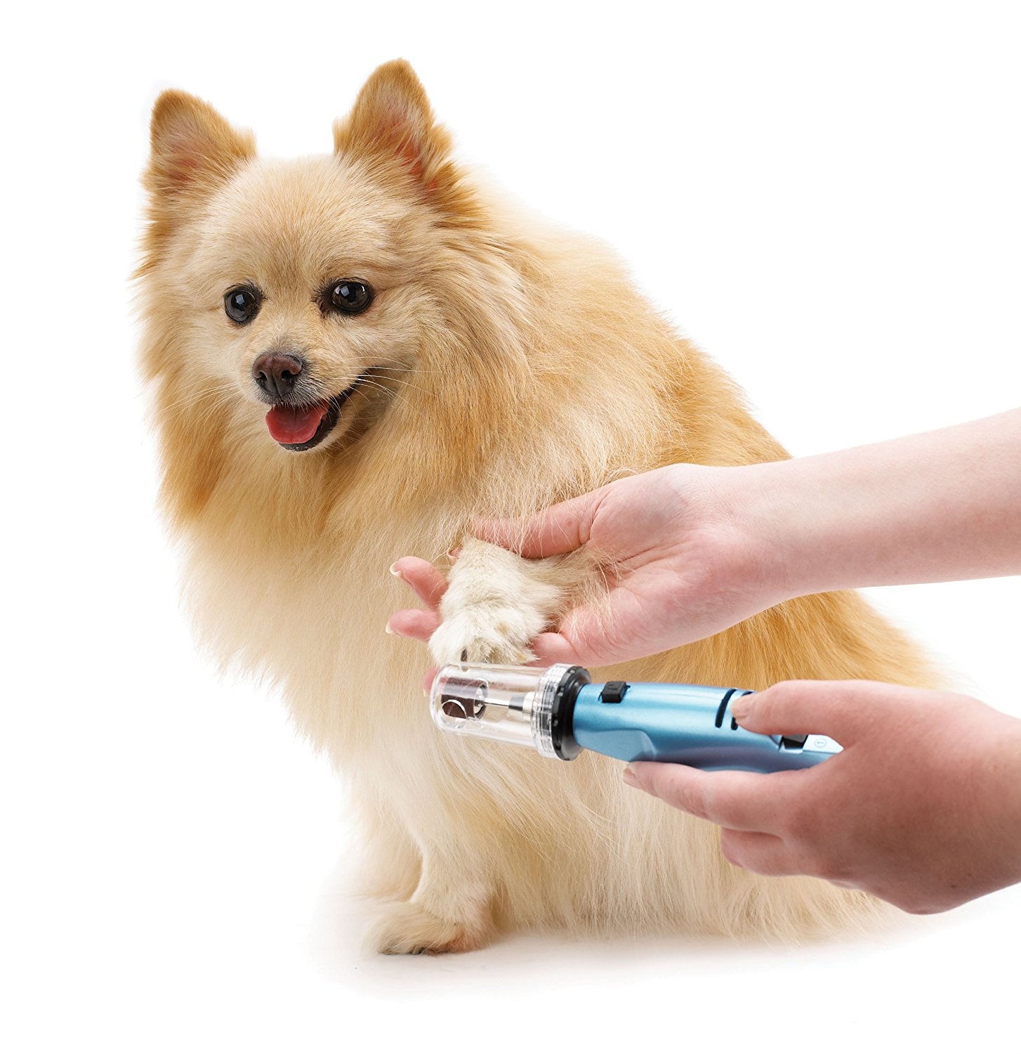 the best dog nail grinder for treating your dog s nails