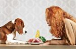 The Do's and Don'ts of Feeding Your Dog Human Food