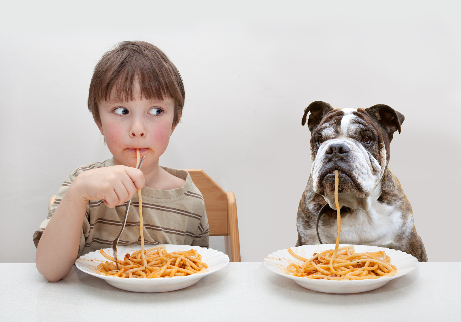 small child and his dog eat spaghetti