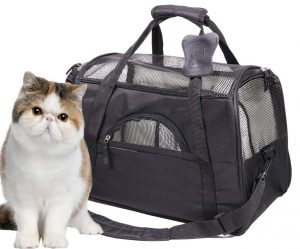 product photo for a pet carrier