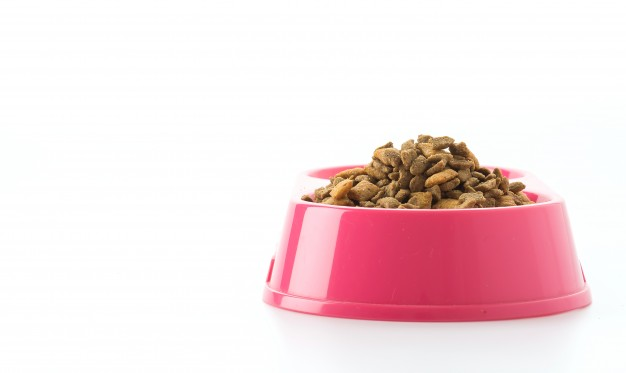 Pet food in a pink bowl